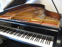 piano en vleugel service